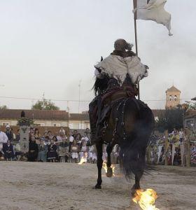 c_280_300_16777215_00_images_fotos_medieval2014_MG_4122.jpg