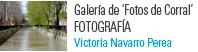 Vicky Navarro